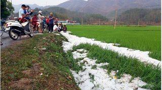 Tin tức trong ngày 26/3: Mưa đá gây thiệt hại nghiêm trọng ở Điện Biên