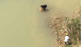 Sau nhiều ngày mất tích, cô gái trẻ được phát hiện tử vong dưới sông