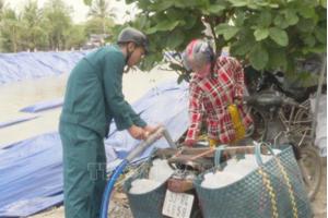 Tin tức trong ngày 29/3: Cấp nước ngọt cứu cây trồng tại Tiền Giang