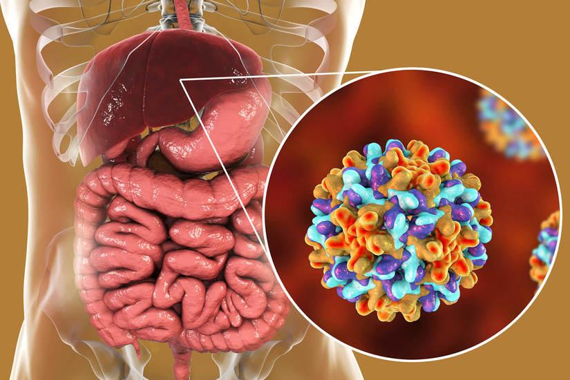 dấu hiệu bệnh viêm gan B
