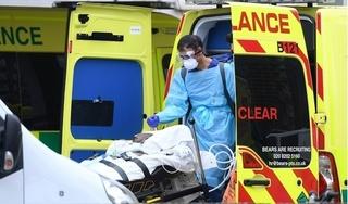 Các bộ xét nghiệm được Chính phủ Anh đặt hàng có dính virus corona từ trước