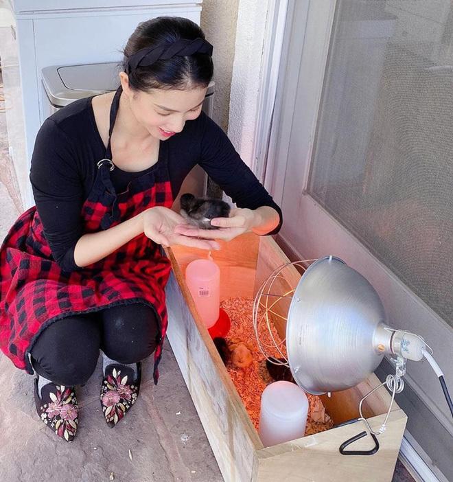 Cách ly ở nhà, Phạm Hương diện bikini nằm phơi nắng đọc sách ngoài vườn
