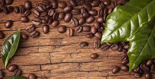 Giá cà phê hôm nay ngày 6/4: Chưa có khởi sắc