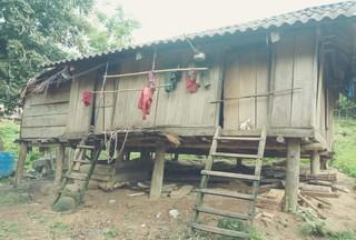 Xem ti vi xong, 20 người Mày bỏ nhà vào rừng 'trốn' Covid-19