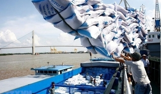 Tin tức trong ngày 11/4: Thủ tướng đồng ý cho xuất 400.000 tấn gạo trong tháng 4