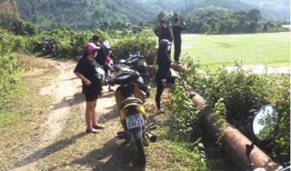 Tụ tập check in 'biển' hoa lục bình, 12 người ở Lào Cai bị phạt tiền