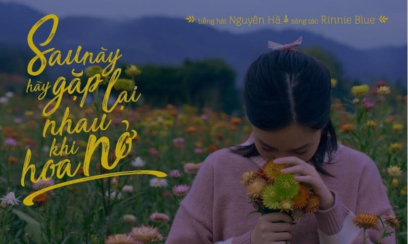 Lời bài hát Sau này hãy gặp lại nhau khi hoa nở của ca sĩ Nguyên Hà, bản tình ca lãng mạn
