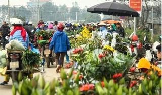 Sóc Sơn: 100% trường hợp liên quan đến ổ dịch Hạ Lôi và chợ hoa Mê Linh âm tính Covid-19