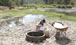 Tin tức trong ngày 17/4: Người dân Ninh Thuận thiếu nước sinh hoạt nghiêm trọng do khô hạn