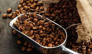 Giá cà phê hôm nay ngày 18/4: Trong nước đi ngang, thế giới giảm sâu