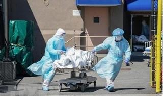 Việt Nam 3 ngày liên tiếp không có ca nhiễm mới, dịch Covid-19 trên thế giới vẫn diễn biến phức tạp
