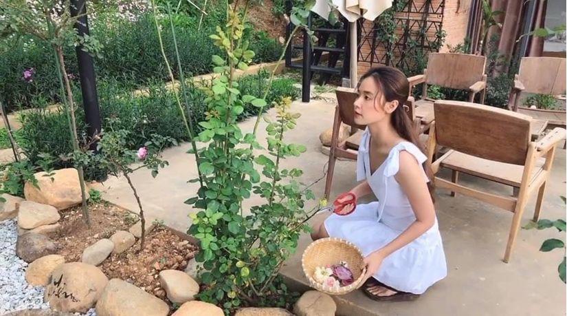 Midu chăm vườn rau, ngắm hoa, nấu ăn trong những ngày cách ly