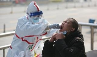 Số ca mắc Covid-19 tại Trung Quốc có thể cao gấp 4 lần