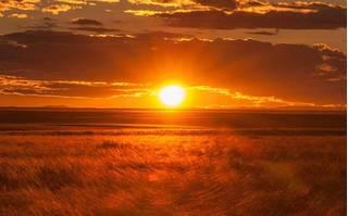 Sự thật về ánh nắng mặt trời có thể tiêu diệt được virus corona