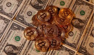 Giá bitcoin hôm nay 30/4: Tăng mạnh 12,47%, ở mức 8.775,89 USD