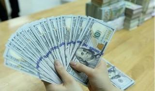 Tỷ giá USD hôm nay 3/5: Thị trường trong nước tiếp tục đi ngang