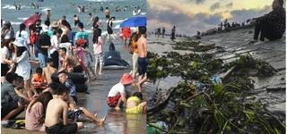 Du khách chen nhau tắm biển Sầm Sơn, Cửa Lò, Quất Lâm