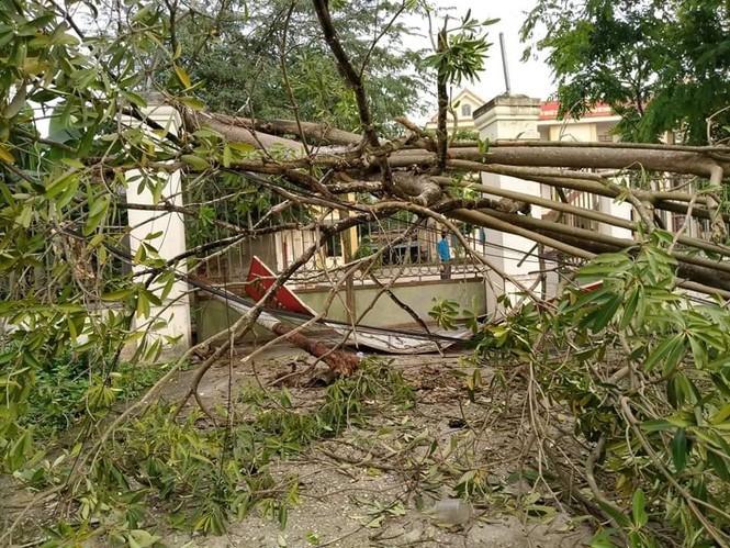 Lốc xoáy cuốn sập nhà, người dân biên giới điêu đứng