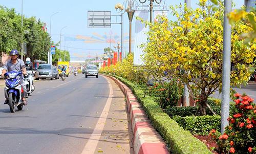 Đáng báo động nạn trộm hoa trên quốc lộ nghìn tỉ mới khánh thành