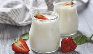 Cách làm sữa chua sánh mịn ngon dẻo tại nhà
