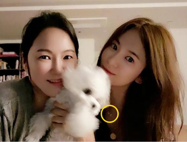 Tiếp tục rộ bằng chứng Song Hye Kyo và Hyun Bin tái hợp