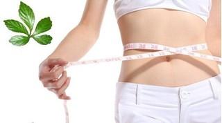 Các bí kíp giúp giảm cân hiệu quả