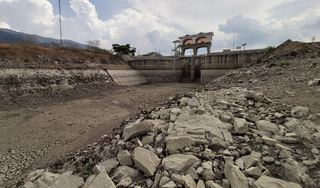 Tin tức trong ngày 24/5: Khoảng 72.000 người dân Ninh Thuận có nguy cơ thiếu đói do hạn hán