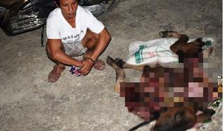 Truy bắt đối tượng trộm bò hàng xóm xẻ thịt bán