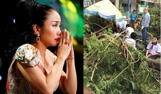 Hành động đẹp của sao Việt tới bé trai tử vong vì cây phượng bật gốc