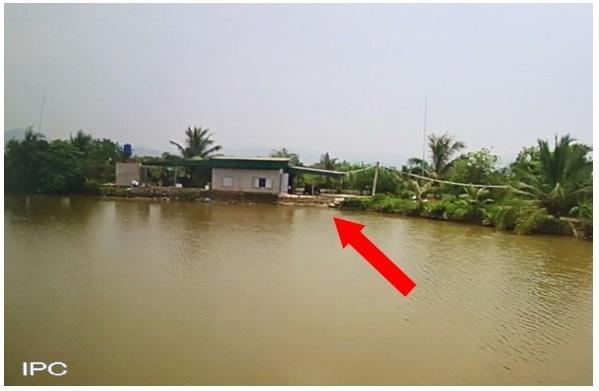 Quảng Ninh: Bé 21 tháng hôn mê, nguy kịch vì đuối nước