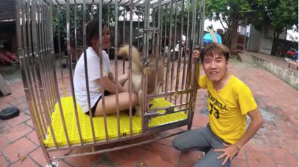 Con trai bà Tân Vlog lại hứng 'gạch đá' vì clip nhốt em gái vào chuồng chó