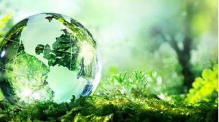 Ngày Môi trường thế giới năm 2020 với chủ đề 'Hành động vì thiên nhiên'