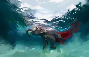 Dân mạng phẫn nộ vì vụ voi mang thai ăn dứa chứa pháo tử vong