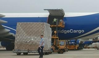 Việt Nam xuất khẩu thêm 30 triệu khẩu trang y tế đi Bắc Mỹ