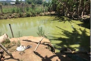 Quảng Nam: Hai cha con bị điện giật tử vong khi kéo điện bắt cá