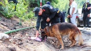 Sự thật thông tin chó nghiệp vụ hy sinh khi truy bắt phạm nhân trốn trại