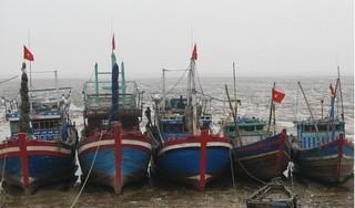 Tàu cá va chạm với tàu hàng, 1 người chết, 4 người mất tích