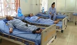 Sơn La: 19 người bị ngộ độc vì ăn bọ xít