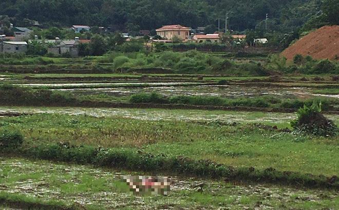 Thảm án 3 người chết ở Điện Biên: 'Con nợ' giết hai vợ chồng chủ nợ rồi tự tử
