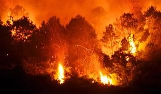 Cháy rừng kinh hoàng ở Nghệ An và Hà Tĩnh, hàng nghìn người trắng đêm dập lửa
