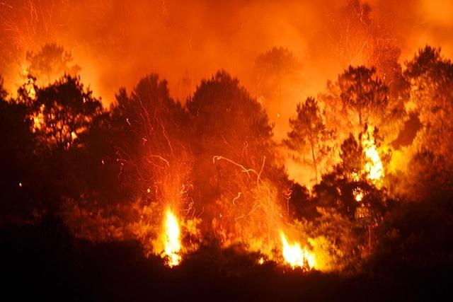 Cháy rừng kinh hoàng ở Hà Tĩnh, Nghệ An, hàng nghìn người trắng đêm dập lửa