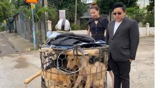 Quang Lê ra tay giải cứu 5 chú chó đang bị đưa đến lò mổ