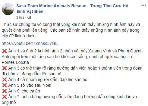 Quang Vinh - Phạm Quỳnh Anh bị lên án vì hành động phá hoại tài nguyên thiên nhiên biển