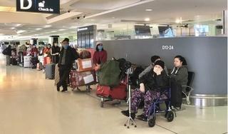 350 người Việt từ Australia và New Zealand được đưa về nước