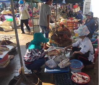 Tin tức thế giới 4/7: Trung Quốc từng bước xóa bỏ giết mổ gia cầm sống tại các chợ