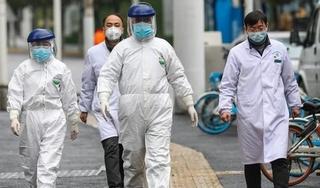 WHO cử chuyên gia tới Trung Quốc điều tra nguồn gốc virus SARS-CoV-2