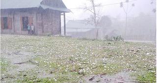 Dự báo thời tiết ngày 10/7: Chiều tối nay, vùng núi Bắc Bộ có mưa rào