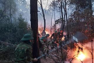 Người phụ nữ đốt rác gây cháy rừng 2 xã, hơn 1.000 người oằn mình dập lửa trong đêm