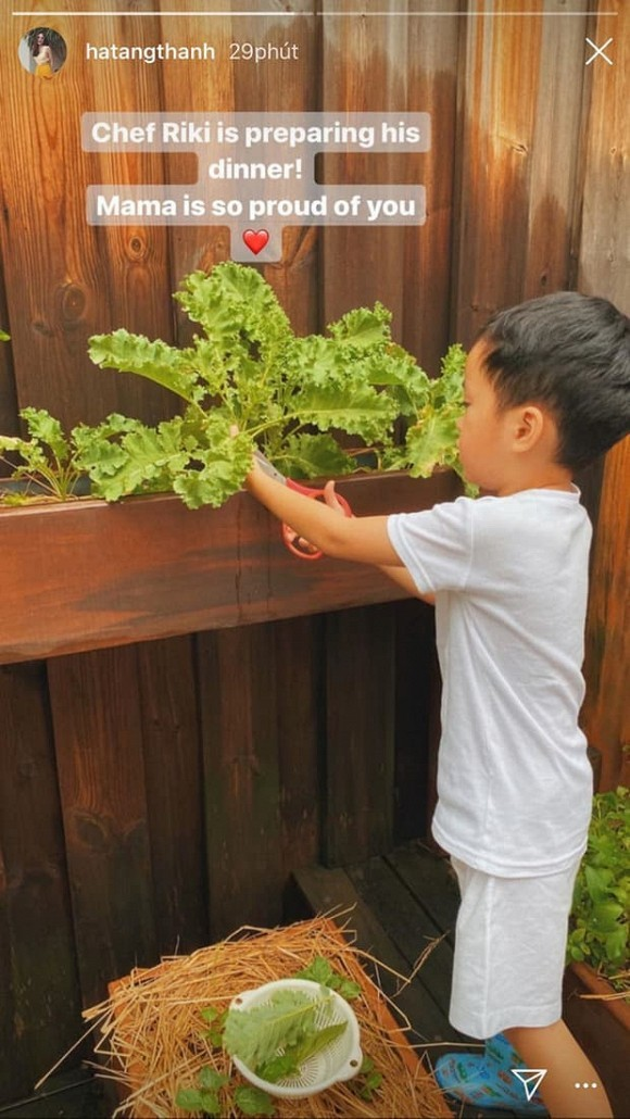 Hà Tăng khoe hình ảnh 2 nhóc tì giản dị theo mẹ trồng rau muống