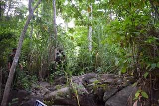 Rùng mình phát hiện thi thể người đang phân hủy trong rừng già
